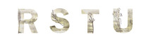 Light Textured Alpha On A White Background With Elements Of Herbs. Letters R, S, T, U. Stylish Initials For Your Invitation.