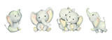 Fototapeta Fototapety na ścianę do pokoju dziecięcego - Cute elephants, tropical cute animals. Watercolor set. Set, watercolor animals, on isolated background. For children's cards and invitations.