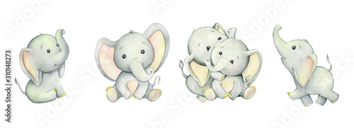 Cuadros en Lienzo Cute elephants, tropical cute animals
