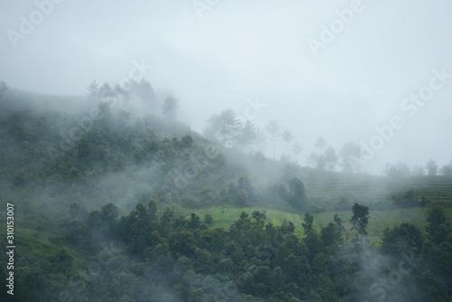 vietnam morning fog Canvas Print