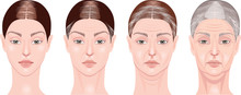 Vector Clipart Face Of A Woman At Different Ages, Youth, Mature Woman, Elderly Woman, Old Woman