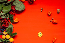 Autumn Red And Yellow Leaves F...