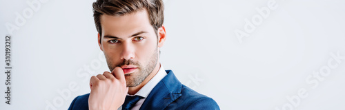Fotografia  handsome businessman in blue suit isolated on white, panoramic shot