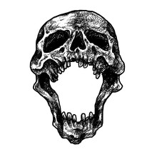 Human Skull Dot Work Illustrat...