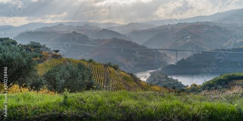 Slika na platnu Bridge over a river, Lamego Municipality, Viseu District, Douro Valley, Portugal