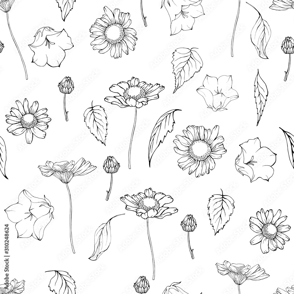 Fototapeta Vector seamless pattern with flowers chamomiles and bells and leaves. Black and white, contour. Monochrome background for your design.