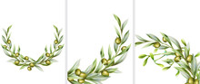 Big Set Of Green Olive Wreath In Random Angles. Vector