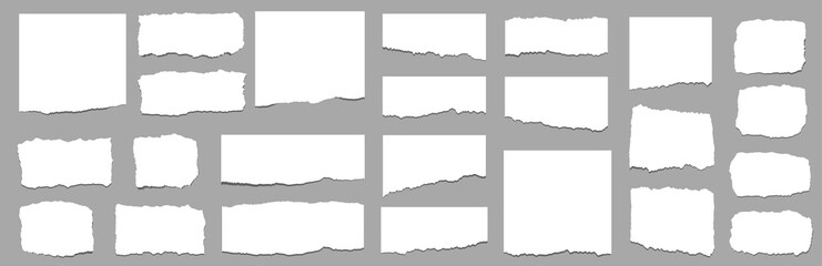 Torn sheets of paper. Torn paper strips set. Vector