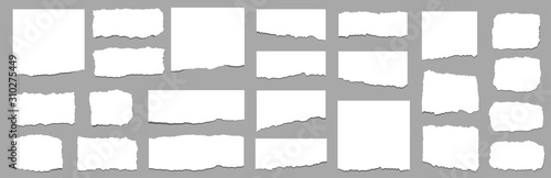 Fototapeta Torn sheets of paper. Torn paper strips set. Vector obraz