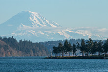 The Mount Rainer Overlooking The Puget Sound