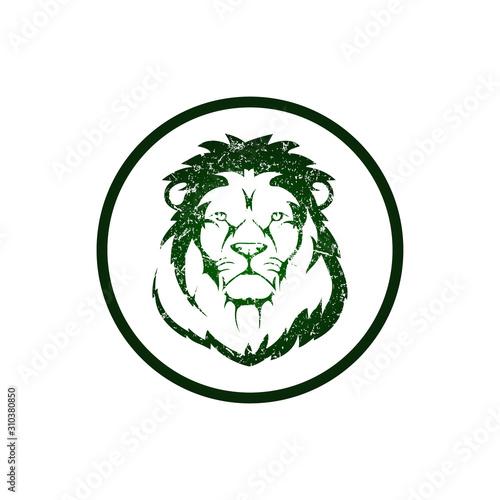 Photo Lion Head Icon Logo template - VECTOR
