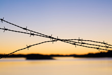Close-up Of Barbed Wire At Sun...
