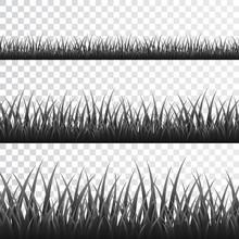 Gray Grass Border Set On Transparent Background. Vector Illustration