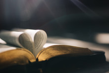 Soft Focus Open Holy Bible At ...