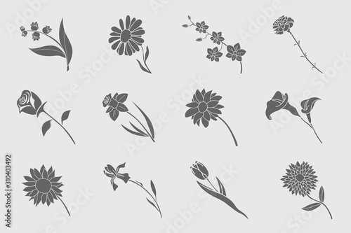 Flower Icons set - Vector solid silhouettes of rose, tulip, chamomile, carnation Fototapet