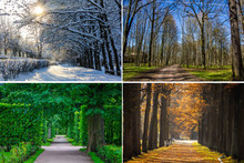 Collage Seasons . All Season. ...