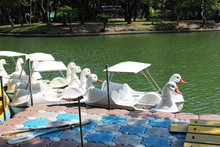 White Duck Shaped Pedal Boat For Tourist Services In The Park