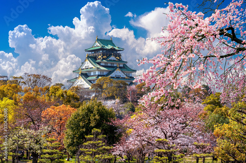 Fotomural Cherry blossoms and castle in Osaka, Japan.