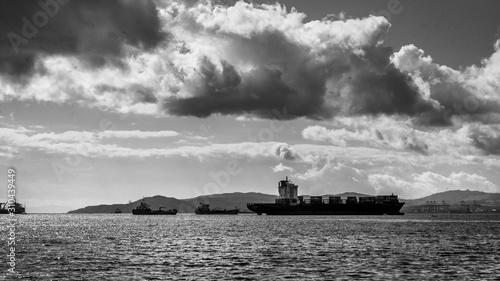 Fototapety, obrazy: Ship along coastline, Manilva, Malaga Province, Spain