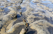 Texture Of Old Rusty Chain Running Across Rock Pools And Beach In The UK