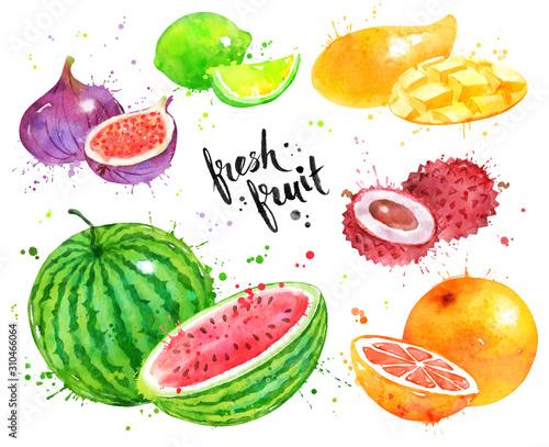 Fotomural Watercolor set of fruit