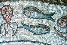 Treviso, Ancient Roman Mosaic