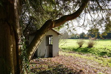 French Countryside Wooden Abandoned Cabin In A Beautiful Spring Garden