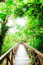 Wooden Bridge Road In A Rainfo...