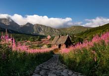 Tatra Valley In Summer