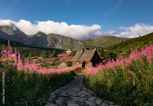 Fototapety, obrazy: Tatra valley in summer