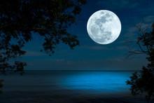 Bright Full Moon Over Sea In The Dark Night.