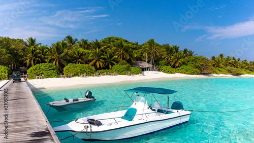Private jetty on pristine tropical beach Poster Mural XXL
