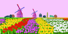 Vector Illustration Of A Landscape With Dutch Tulips And Windmills. For Design Posters And Greetings.