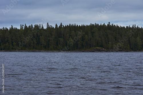The nature of Karelia Slika na platnu