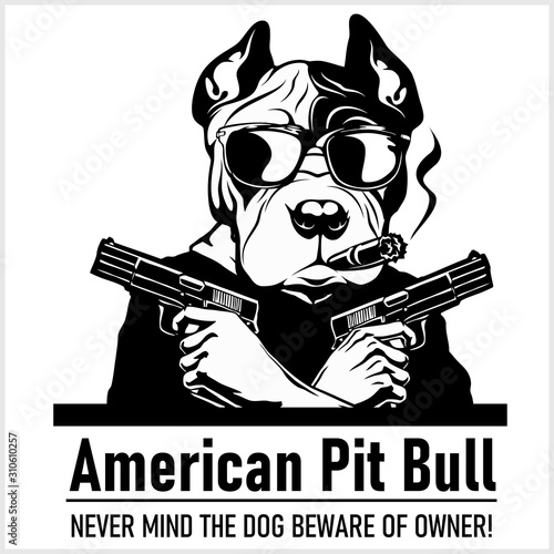 Valokuvatapetti American Pit Bull dog with glasses, two pistols and cigar - American Pit Bull gangster