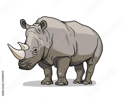 Obraz na plátně African savannah animal rhinoceros isolated in cartoon style