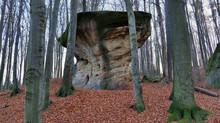 Rezerwat Przyrody Kamień-Grzy...
