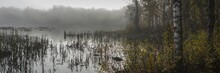 Panoramic View Of An Eerie Lak...