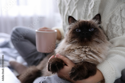 Woman with her cute Balinese cat on bed at home, closeup. Fluffy pet