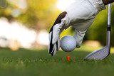Golf ball on green grass field. sport golf club,Hand hold golf ball with tee on golf course