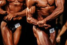 Muscular Athletic Bodybuilder ...
