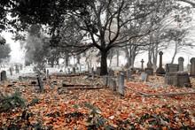 A Scarey Grave Yard In The Autumn Mist