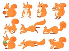 Cartoon Squirrel. Cute Squirrels With Red Furry Tail, Mammals Animals And Brown Fur Squirrel Vector Set. Adorable Forest Fauna, Funny Wildlife Stickers Collection. Happy Cub Illustrations Pack