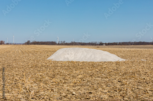 Vászonkép Pile of pulverized agricultural slaked lime in harvested cornfield with cornstal