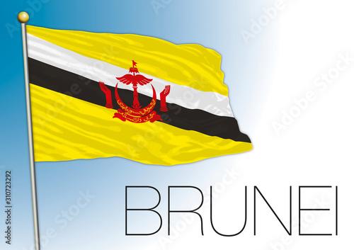 Papel de parede Brunei sultanate official flag, vector illustration