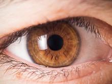 Human Eye Close Up Medical Detail
