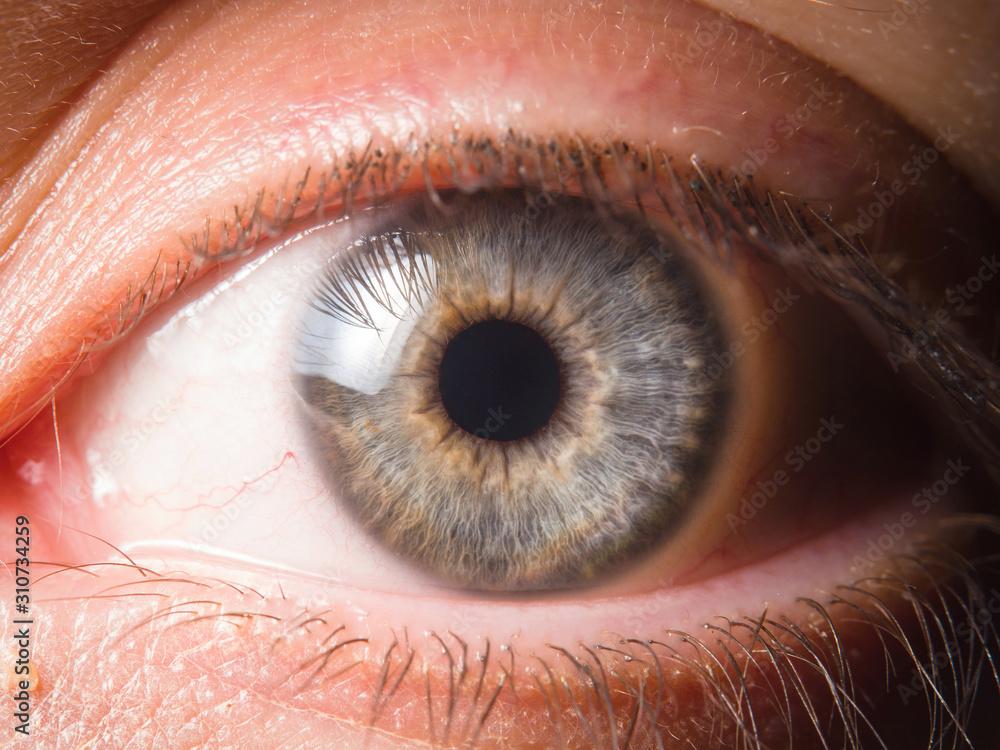 Fototapeta Detail of human eye eyeball
