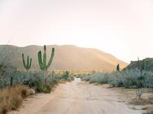 Desert Dirt Road Landscape At Sunset