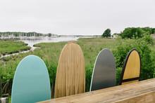 Surfboards Lined In Marsh Landscape