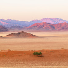 Dawn In The Namib Desert